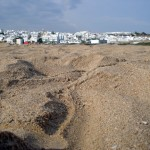 Conil, un mar de playas a elegir