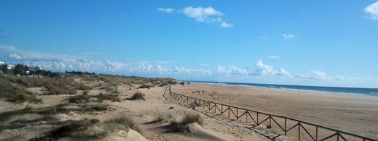 Playa El Palmar en Vejer